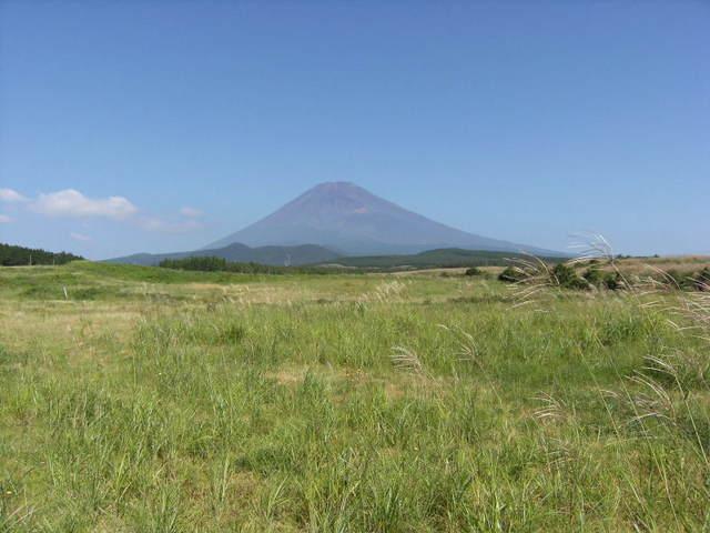 裾野からの富士山